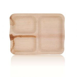 Arica-Palm-3-Partition-Rectangle-Sheath-Plate