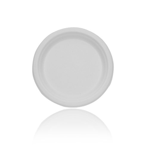 Arica-Palm-6-Round-flat-Plate