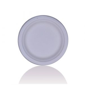 """BAGASSE – 9"""" Round Flat Plate"""